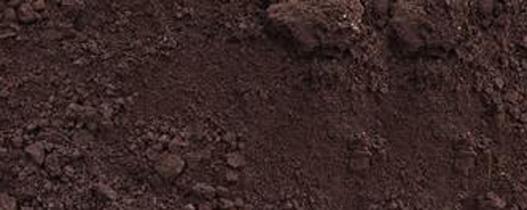 teelaarde / zwarte grond